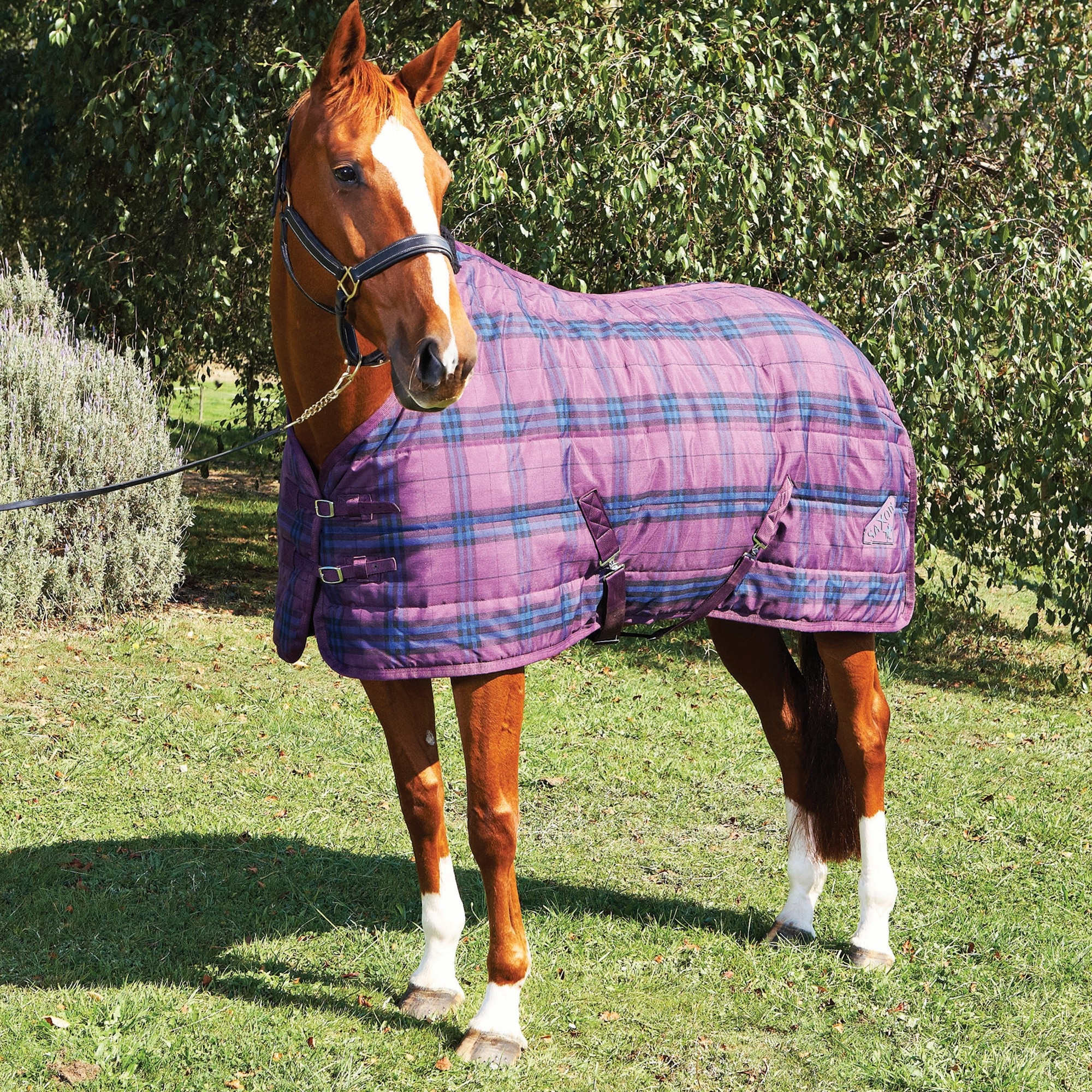Top Properties Of A Stable Rug To Be Vigilant Of